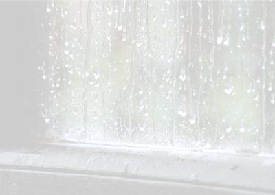 Rain Requests